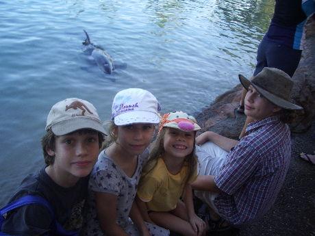 delfinnel